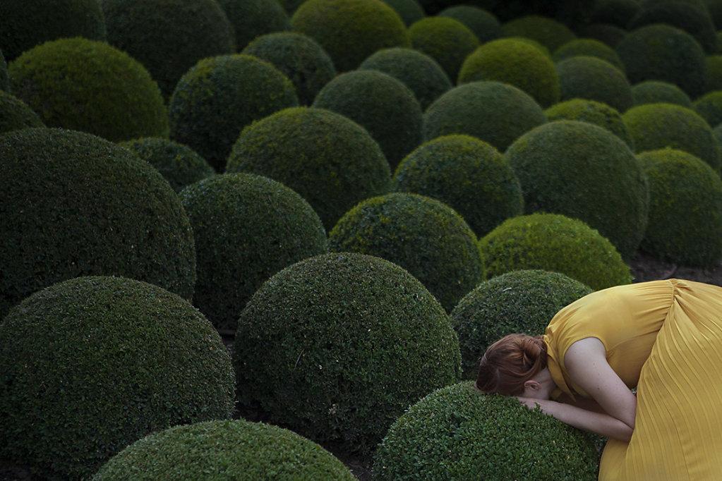 jardinjaune-maia.jpg